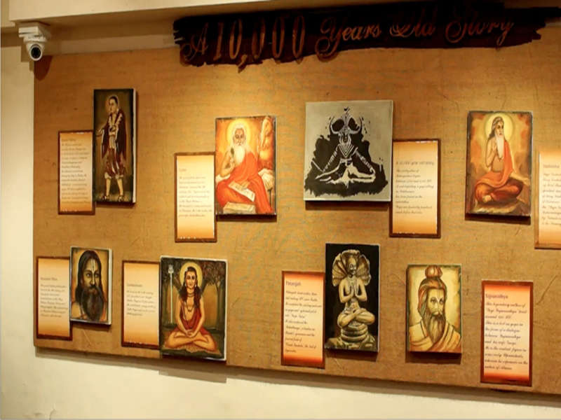 the-yoga-museum-the-yoga-institute-mumbai